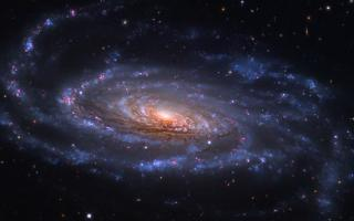 Spiral Galaxy NGC 5033