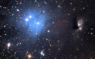 Reflection Nebula vdB1